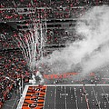 Cincinnati Bengals Playoff Bound by Dan Sproul