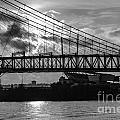 Cincinnati Suspension Bridge Black And White by Mary Carol Story