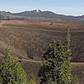 Cinder Cone Crater by Kristina Lammers