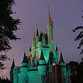 Cinderella Castle At Night  by Lingfai Leung