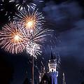 Cinderella Castle Fireworks Iconic Fairy-tale Fortress Fantasyland by David Zanzinger