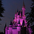 Cinderella Castle Illuminated In Pink Glow by Lingfai Leung