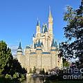 Cinderella's Castle II by Carol  Bradley