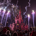 Cinderella's Castle With Fireworks by Adam Romanowicz