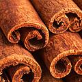 Cinnamon - Cinnamomum by Iris Richardson