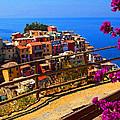 Cinque Terre 1 by Susan Rovira