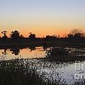 Circle B Winter Sunset by Carol  Bradley