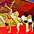 Circus Dog Act by Alice Gipson