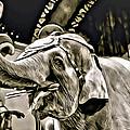Circus Elephant by Alice Gipson