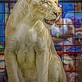 Circus Lion by LeeAnn McLaneGoetz McLaneGoetzStudioLLCcom