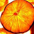 Citrus Slices by Grace Dillon