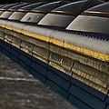 City Domes by David Howarth