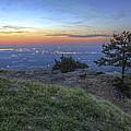 City Lights From Sunrise Point At Mt. Nebo - Arkansas by Jason Politte