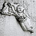 Surreal Angel by Shaun Higson