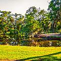 City Park New Orleans by Steve Harrington