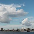 City Skyline, Manaus, Brazil by Chris Linder