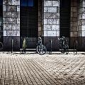 City Transportation by Angelina Vick