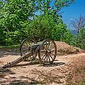 Civil War Cannon by Mary Almond
