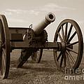 Civil War Cannon by Olivier Le Queinec