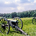 Civil War Cannons by Bob Phillips