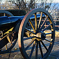 Civil War Cannon by Dale Wilson