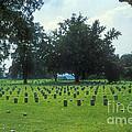 Civil War Gravesites by Bob Phillips