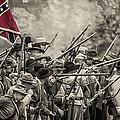 Civil War South  by David  Banks