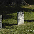 Civil War Unknown Dead by Paul W Faust -  Impressions of Light