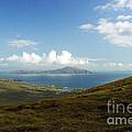 Clare Island Connemara Ireland by Butch Lombardi