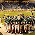 Clare Pioneers At Ford Field by Terri Gostola