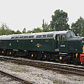 Class 40 Diesel by Ted Denyer