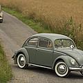 Classic Beetle  2 by Stefan Bau