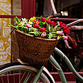 Classic Bicycle With Tulips by Scott Hill