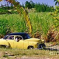Classic Cuba by Halifax Photographer John Malone