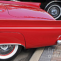 Classic Red And Black by Ann Horn
