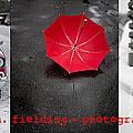 Edward M. Fielding Photography by Edward Fielding