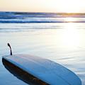 Classic Single-fin Long Board Surfboard by Ty Milford