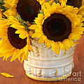 Classic Sunflowers by Art Block Collections