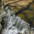 Clear Beautiful Water Series 1 by Paddy Shaffer
