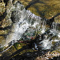 Clear Beautiful Water Series 3 by Paddy Shaffer