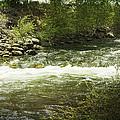 Clear Creek In Colorado by Judy Hall-Folde