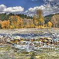 Clear Stream by Wanda Krack