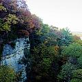 Rock Cliff With Trees by Patrick  Warneka