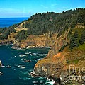 Cliffs At Cape Foulweather by Adam Jewell
