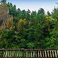 Cliffs High Above Road by Jess Kraft