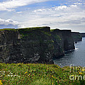 Cliffs Of Moher Looking South by RicardMN Photography