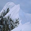 Climbers On Summit Ridge Of Mt Scott by Colin Monteath