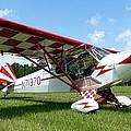Clipped Wing Cub by Matt Abrams