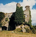 Clonmore Castle Carlow by Val Byrne
