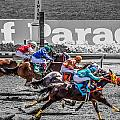 Close Finish At Turf Paradise by James Gordon Patterson